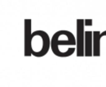Преимущества продуктов для защиты древесины от ТМ Belinka