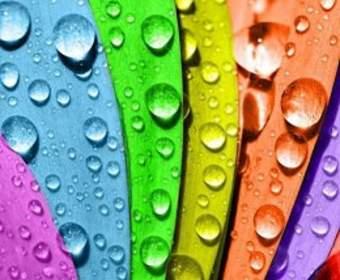 Краска резиновая для фасада или декор из пенополистирола – какой декор здания выбрать?